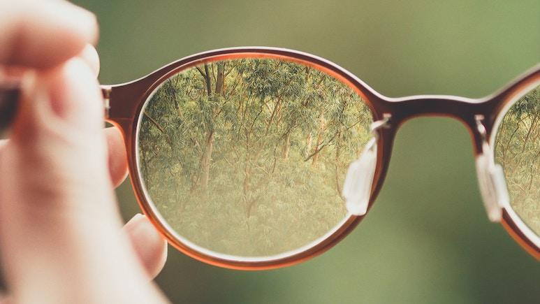 Brille mit Natur